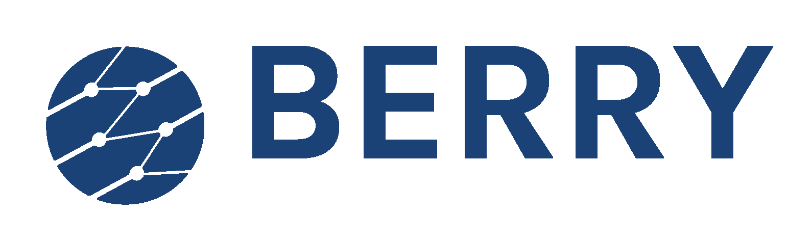 Berry Technology Solutions